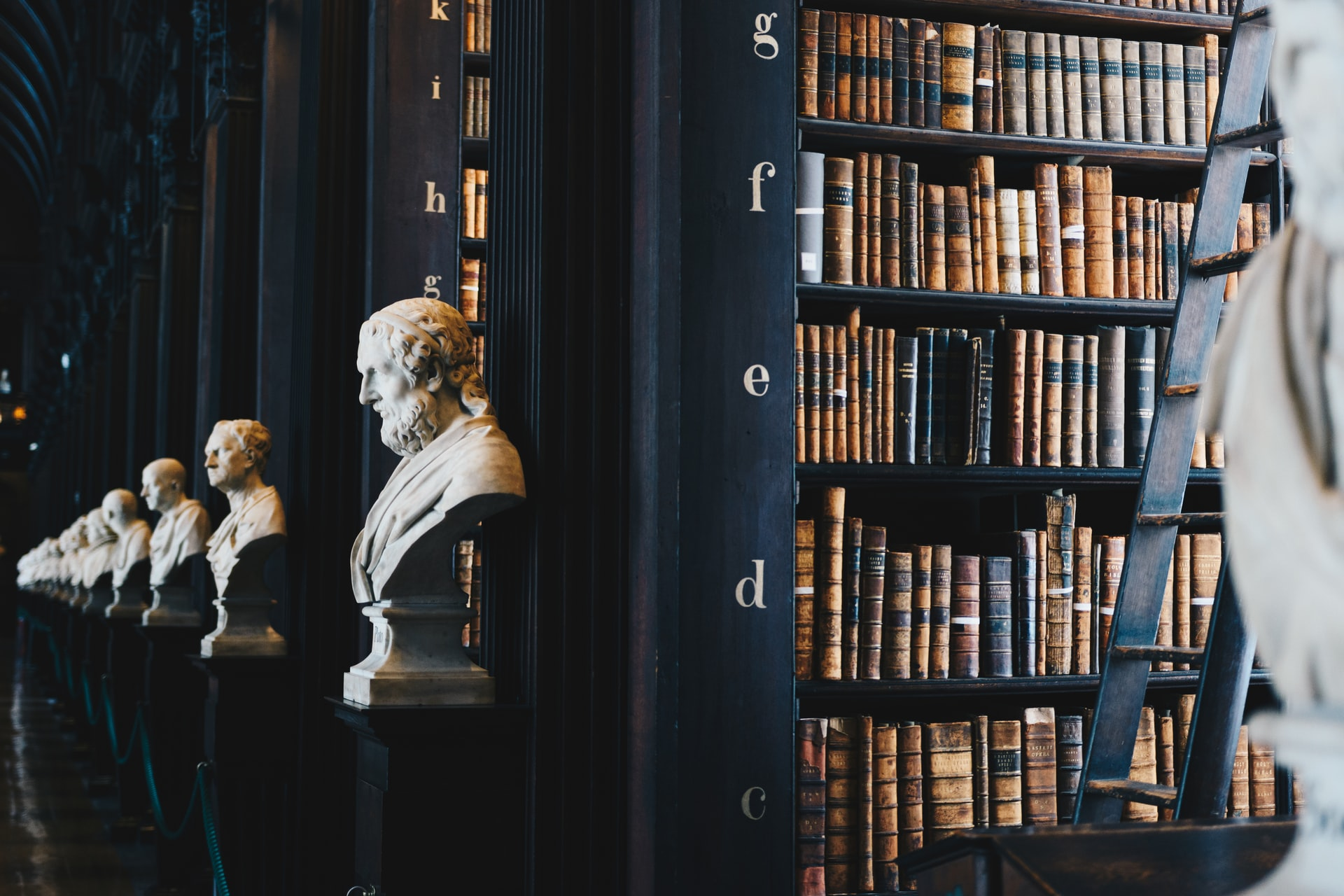 Library containing law books and busts